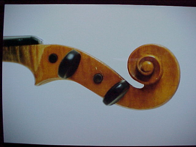 pic of hornsteiner violin
